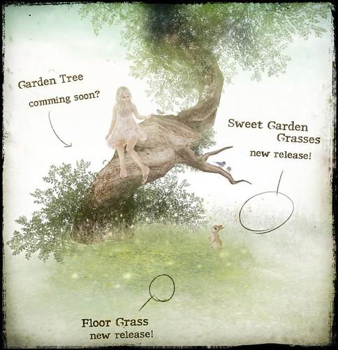 HPMD garden's news:)