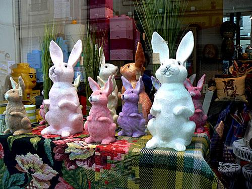lapins chez Fleux.jpg