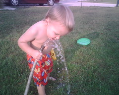 drink from the hose