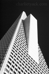 Transamerica Leasing Pyramid (Ch@rTy) Tags: sanfrancisco california travel blackandwhite usa tourism monochrome architecture contrast america photography top20bw place photos famous landmarks places roadtrip landmark monochromatic charlie tall transamerica stark leasing edifice tyack thestates thepyramid top20landmarks darmatic top20architectural