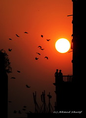 end of day........... (Dhaka, Bangladesh) (Ideas_R_Bulletproof) Tags: city sunset red sun colour birds silhouette buildings nikon photographer disk dhaka nikkor figures bangladesh polaris littlestories d80 mohammadpur aplusphoto af180mmf28 diamondclassphotographer flickrdiamond picswithsoul