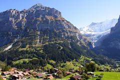 Grindelwald (linolo) Tags: schweiz switzerland europa europe brienzersee suisse swiss first grindelwald svizzera wengen jungfraujoch interlaken thunersee jungfrau  kleine scheidegg bachalpsee svizra topofeurope