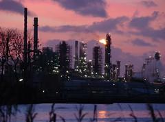 RAFFINERIE SOIR (nARCOTO) Tags: france seine port le havre oil normandie petrol soir raffinerie refinery industrie zi estuaire petrole