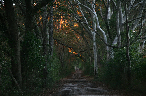 Path at sundown