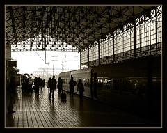 Len. (Maria Artigas) Tags: bw espaa station train spain silhouettes bn leon estacion soe siluetas blancinegre estacio lleo outstandingshots