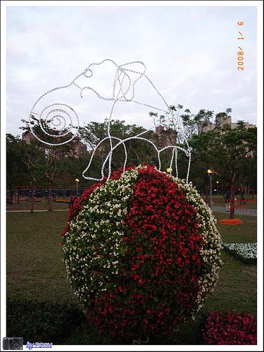 大安森林公園花展 027