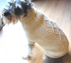 Syd's Aran Sweater (twiddletails) Tags: miniature knit schnauzer mini aran dogsweater