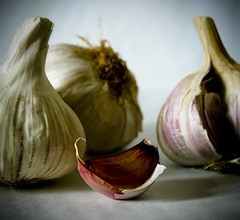 The Gift (Jazz Jumper) Tags: macro sensual delicious cocina offering garlic segment sacrifice clove prpura ajo morado blueribbonwinner onionfamily platinumphoto superaplus aplusphoto platinumheartaward artlegacy colourartawards alientoaajo garlickygorgeousness