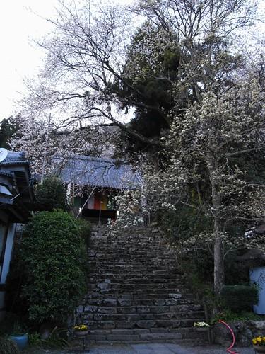 仏隆寺-09