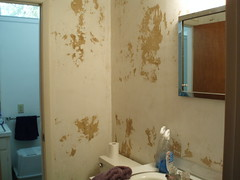 Half Bath Project From Hell - Before (2)