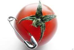 "Punk! (B@rbar@ (Barbara Palmisano)) Tags: red food verde green tomato punk vegetable 1001nights onwhite rosso cibo pomodoro spilla verdura pachino artedellafoto beautifulsecrets ""flickraward"""