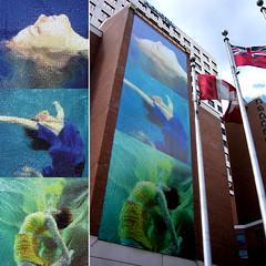 The MOZAK H2O, underwater urban art on the Novotel, Rideau BIA (Human Mozak Humaine) Tags: urban art h2o human mozak