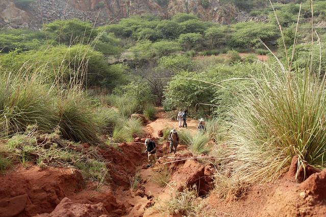 City Nature – Green Mine, Gurgaon-Faridabad Road