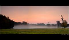 Sunrise at Pohansko (nejicz) Tags: kiss1