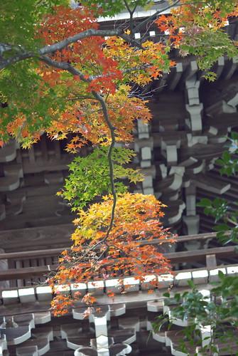Yoshiminedera temple (善峯寺)