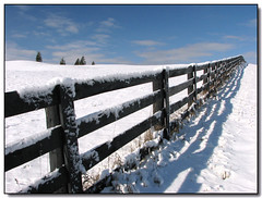 Snowy Fence (Lisa-S) Tags: blue trees winter shadow sky snow ontario canada clouds fence landscape lisas explore allrightsreserved themoulinrouge caledon blueribbonwinner interestingness443 i500 5184 mywinner goldmedalwinner anawesomeshot infinestyle thegardenofzen thegoldendreams goldstaraward escarpmentsideroad copyrightlisastokes