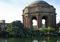 Palace of Fine Arts, San Francisco (Cal Bear 94) Tags: sanfrancisco california birds reflections pond palace palaceoffinearts