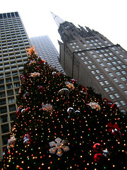 Christmas Tree  downtown Chicago