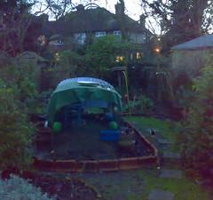 backyard 19th Jan