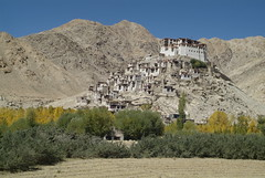 _DSF4947 (snotch) Tags: india tibet ladakh chemreygompa