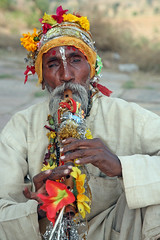 Flute Man Orchha (greenwood100) Tags: travel flowers portrait music india man face beard asian wooden asia colours hand dress bright head nail fingers pipe decoration vivid flute moustache instrument busker tune whistle bold decorated orcha madhyapradesh orchha bundelkhand tinsle ackerbilk bundela urchha