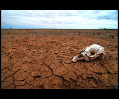 Willandra Drought (heritagefutures) Tags: park sky copyright clouds australia national drought nsw hr dirk allrightsreserved willandra spennemann photofaceoffwinner photofaceoffplatinum pfogold heritagefutures dirkhrspennemann copyrightdirkhrspennemann ausphoto