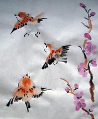 Fat Sparrows