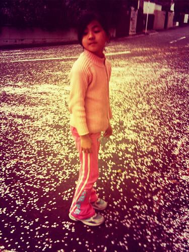 桜が舞っててきれい。娘と花びら拾って風呂に入れてみる。