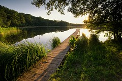 Evening Idyll (Dietrich Bojko Photographie) Tags: lake germany landscape deutschland evening lee filters naturepark brandeburg mrkischeschweiz naturparkmrkischeschweiz dietrichbojko d7000 dietrichbojkophotographie
