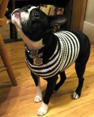 Sam's Sweater Side
