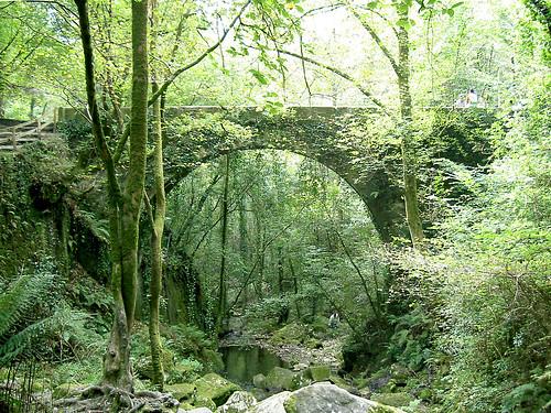 Fragas do Eume - Caaveiro Puente