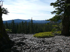 View of the mountains from Tahoe Rim Trail
