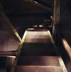 (*YIP*) Tags: wood brown 120 6x6 film mediumformat square floor kodak stairway pro access stark hardwoodfloor woodfloor expiredfilm kiev60 iso160 stairwaylanding yipchoonhong