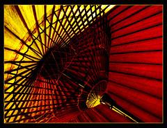 20070902 030 (Edoray) Tags: art japanese sandiego international balboapark mingei japaneseumbrella amazingcolor 25faves mingeimuseum platinumphoto superbmasterpiece diamondclassphotographer amazingamateur theunforgettablepictures platinumheartaward betterthangood proudshopper letsgo2usa insidethemuseums umbrellasjapaneseumbrellasabigfavep1f1soephoto