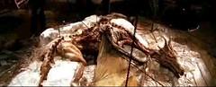 03 Dragonkamun mummy