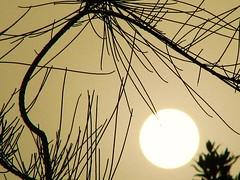 sandstorm at sunrise_8 last series (jimpg2_2015) Tags: fab fiatlux naturesfinest mywinners platinumphoto aplusphoto diamondclassphotographer betterthangood truezen myflickrsworld