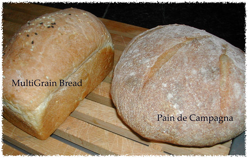MultiGrain and Pain de Campagna