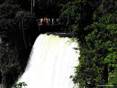 Cataratas del Iguaz 014 / Iguassu Falls 014 (Claudio.Ar) Tags: naturaleza nature water argentina beautiful beauty landscape agua rainforest sony selva paisaje dsc belleza tistheseason h9 smrgsbord iguassufalls naturesfinest cataratasdeliguaz ph039 claudioar claudiomufarrege