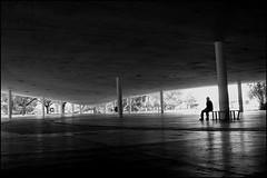So Paulo (Fernando Martinho) Tags: brazil bw man blancoynegro latinamerica americalatina southamerica arquitetura brasil architecture noiretblanc sopaulo pb bn latinoamerica fernando lonely homem pretoebranco hombre biancoenero sanpablo metropole blancinegre americadosul martinho blackwhitephotos