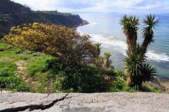 Standing On the Cracked Edge (forty-onecrush) Tags: ocean pacific cliffs asphalt peninsula cracked palosverdes brokenroad