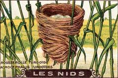 les nids 11