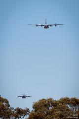 RAAF Lockheed Martin C-130J Hercules, RAAF Boeing C-17A Globemaster III (duffohyeah) Tags: raaflockheedmartinc130jhercules whiteribbon a97 a97464 a41 a41206