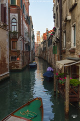 Canals Maze (Scholesville) Tags: azrinaz scholesville quackdamnyou venezia venice travel europe italy canals gamesoftones