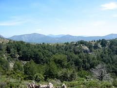 Les bergeries de Firuletu depuis le col 1160 m