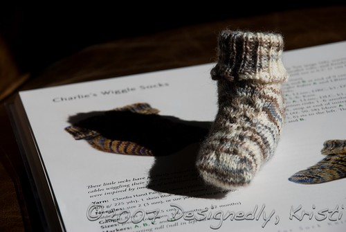 Charlie's Wiggle Sock 1