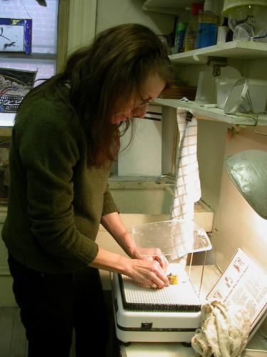 Judith Schaechter grinding glass