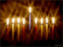 Festival  Of Lights (DigiDi) Tags: freedom chanukah jewish festivaloflights menorah tistheseason americaamerica mywinners worldbest irresistiblebeauty diamondclassphotographer flickrdiamond theperfectphotographer