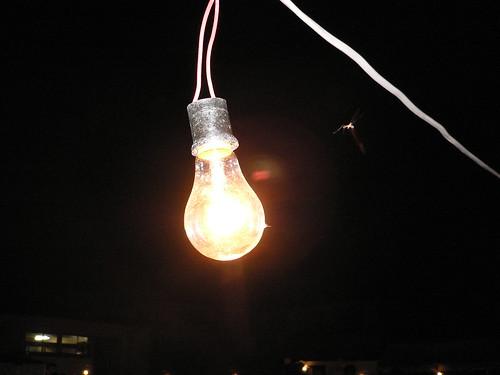 はだか電球