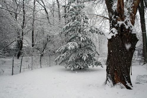 Callaway Nature Preserve