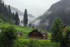 Neelum Valley Kashmir (Max Loxton) Tags: pakistan wild nature beauty clouds lost heaven paradise greenery kashmir
